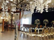 فروش زمین مسکونی 5000 متر در خوشنام در شیپور
