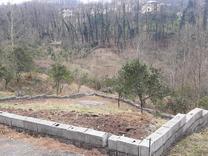 فروش یک قطعه زمین کوه پایه کاربری مسکونی. در شیپور