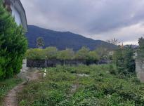 فروش زمین 400 متری شهرکی نوشهر مزگاه در شیپور-عکس کوچک