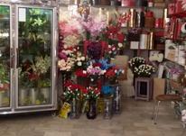 فروش تجاری و مغازه 80 متر در دوه چی در شیپور-عکس کوچک