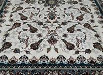 فرش کاف/فرش 6 متری در شیپور-عکس کوچک