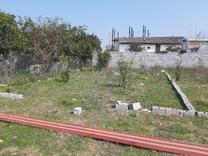 زمین با موقعیت عالی واقع در بندارخیل در شیپور