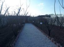 باغ ویلا 700 متری با 40متربنا در شیپور-عکس کوچک