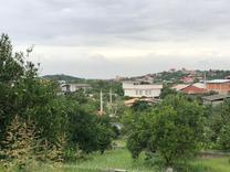 فروش  باغ و زمین  در شیپور