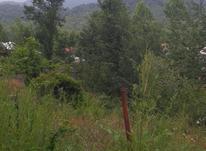 370 متر زمین مسکونی در آزارستانکی  در شیپور-عکس کوچک