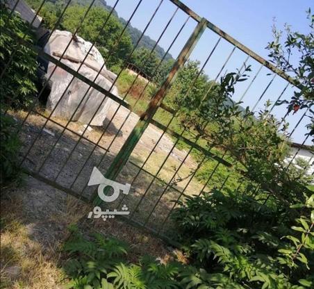 فروش زمین مسکونی 1000 متر در زرین اباد در گروه خرید و فروش املاک در مازندران در شیپور-عکس1