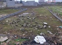 فروش زمین مسکونی 200 متر در بابل در شیپور-عکس کوچک