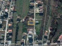 فروش زمین مسکونی 1080 متر در نوشهر در شیپور-عکس کوچک