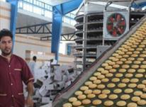سرمایه گذاری با سود ماهیانه در شیپور-عکس کوچک