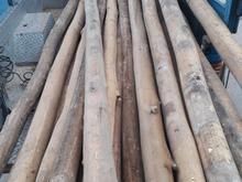 خریدار چوب..... در شیپور