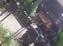 فروش ویلا 460 متر در شهرک خزرکنار در شیپور-عکس کوچک