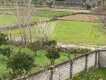 فروش زمین مسکونی 250 متر در جاده نظامی در شیپور