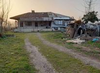 فروش زمین مسکونی 20000 متر در کوچصفهان در شیپور-عکس کوچک