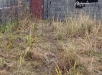 فروش زمین مسکونی 271 متر در عباس آباد در شیپور-عکس کوچک