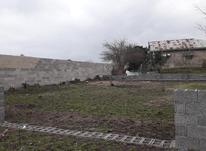 زمین مسکونی 290 متری سند تک برگ در صومعه سرا در شیپور-عکس کوچک