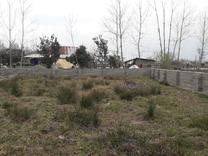 زمین مسکونی 320 متری روستایی با مجوز بنیاد صومعه سرا در شیپور