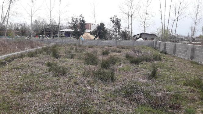 زمین مسکونی 320 متری روستایی با مجوز بنیاد صومعه سرا در گروه خرید و فروش املاک در گیلان در شیپور-عکس4