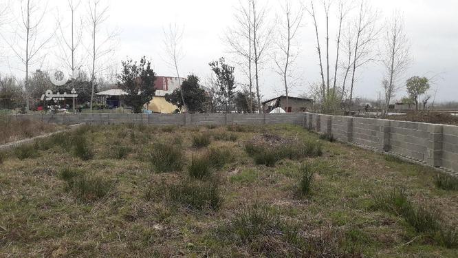 زمین مسکونی 320 متری روستایی با مجوز بنیاد صومعه سرا در گروه خرید و فروش املاک در گیلان در شیپور-عکس1