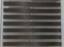 پرده زبرا سالم  در شیپور-عکس کوچک