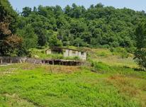 فروش زمین مسکونی 1000 متر در آمل در شیپور-عکس کوچک