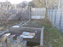 باغ زردآلو 3 ساله روستای هاردنگ مجموعه تفریحی شاهخراسان در شیپور