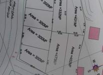 فروش زمین مسکونی 2800 متر در کوچصفهان در شیپور-عکس کوچک