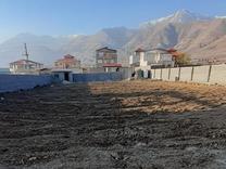 فروش زمین  1300 متر در دماوند جابان در شیپور