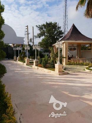 فروش ویلا 600 متر در چمستان در گروه خرید و فروش املاک در مازندران در شیپور-عکس15