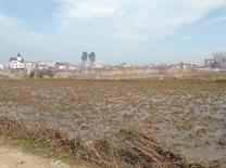 زمین کشاورزی 1200 متر در هچیرود. در شیپور