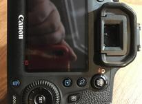 6d canon+50mmstm در شیپور-عکس کوچک