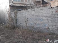 فروش زمین مسکونی 230 متر در پشت میزبان بابلسر در شیپور-عکس کوچک