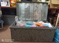 فروش پوشاک بچه گانه به قیمت عمده در شیپور-عکس کوچک
