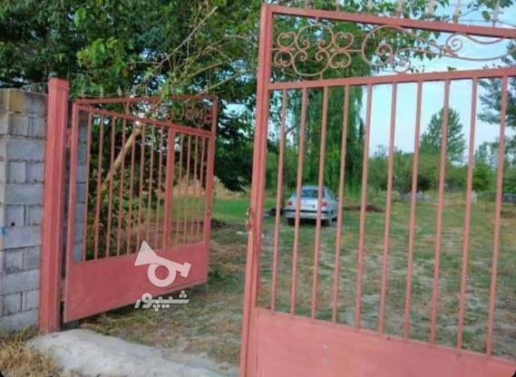 فروش باغ 5753 متری در کلوده در گروه خرید و فروش املاک در مازندران در شیپور-عکس2