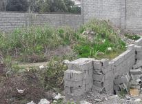 زمین مسکونی 191 متر در خیابان پاسداران بابلسر در شیپور-عکس کوچک