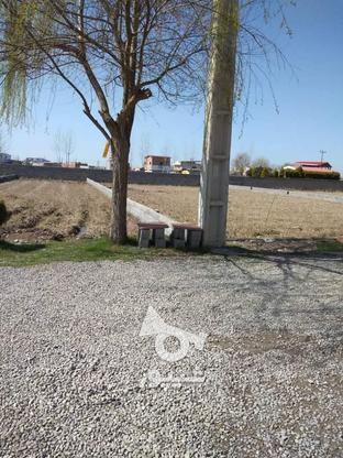 فروش زمین مسکونی 480 متری در معصوم آباد در گروه خرید و فروش املاک در مازندران در شیپور-عکس4