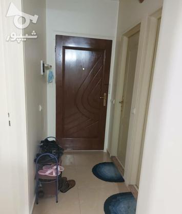 فروش آپارتمان 48 متر در شهرزیبا در گروه خرید و فروش املاک در تهران در شیپور-عکس9