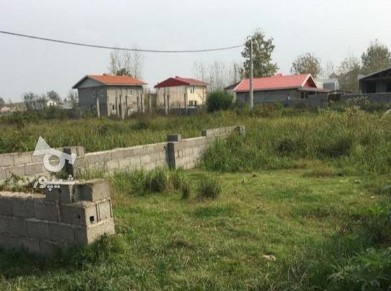 فروش زمین مسکونی 250 متر  در گروه خرید و فروش املاک در گیلان در شیپور-عکس1