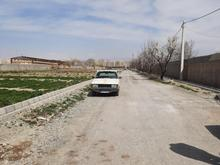 باغچهچهاردیواری در شیپور