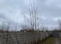 1000 متر زمین مسکونی سنددار در تمچال آستانه در شیپور-عکس کوچک