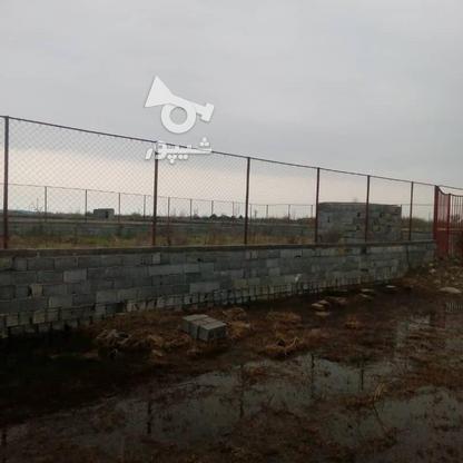 زمین باغی 600 متر در آمل در گروه خرید و فروش املاک در مازندران در شیپور-عکس3