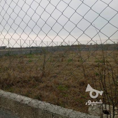 زمین باغی 600 متر در آمل در گروه خرید و فروش املاک در مازندران در شیپور-عکس2