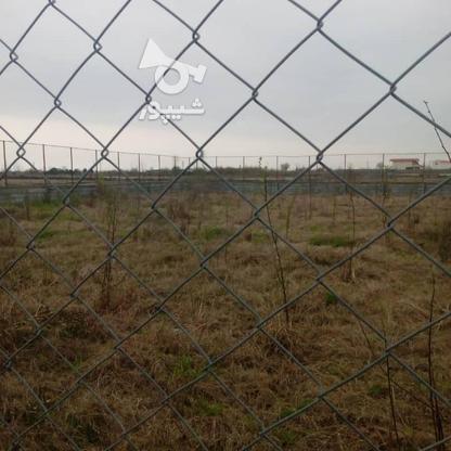 زمین باغی 600 متر در آمل در گروه خرید و فروش املاک در مازندران در شیپور-عکس1