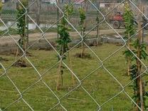 زمین باغی 320 متر  در شیپور