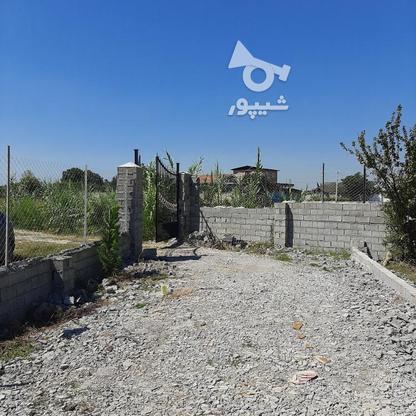 زمین باغچه  200 متر  در گروه خرید و فروش املاک در مازندران در شیپور-عکس1
