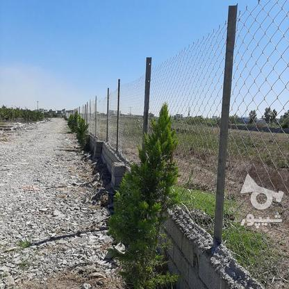 زمین باغچه  200 متر  در گروه خرید و فروش املاک در مازندران در شیپور-عکس2