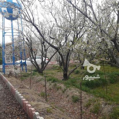 فروش ویلا 1000 متر در شهریار در گروه خرید و فروش املاک در تهران در شیپور-عکس1