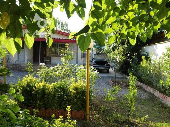 290 متری منطقه سرسبز و زیبا جنگلی در گروه خرید و فروش املاک در مازندران در شیپور-عکس6