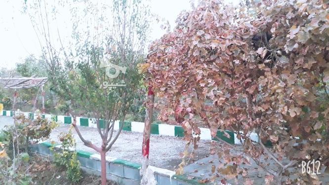 فروش باغچه دارای مجوز ساخت در گروه خرید و فروش املاک در تهران در شیپور-عکس1