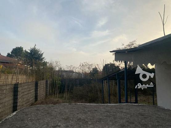 زمین ساحلی 352 متری عرصه عیان با امتیاز برق در گروه خرید و فروش املاک در گیلان در شیپور-عکس1