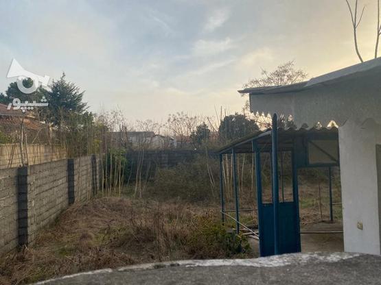 زمین ساحلی 352 متری عرصه عیان با امتیاز برق در گروه خرید و فروش املاک در گیلان در شیپور-عکس4